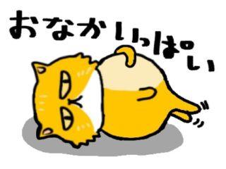 お腹いぱい黄色ネコ
